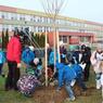 Děti sadí strom