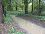 Zavodňování Kněžpolského lesa 15