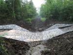 Zavodňování Kněžpolského lesa 10