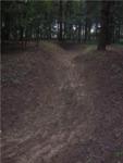 Zavodňování Kněžpolského lesa 4